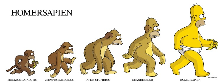 evolution-of-homer-simpson